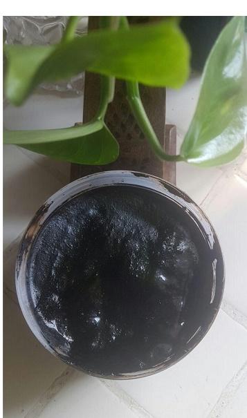 ayahuasca tea for sale